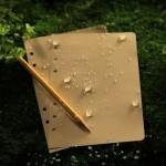 LL9511T : Loose Leaf Copier Forms - Tan