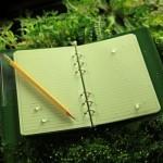 982 : Small Binder Sheets - Green/Universal