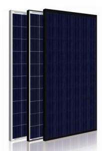 Hanwha HSL60P 250W Solar Module